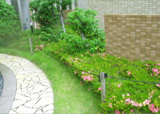 造園のイメージ